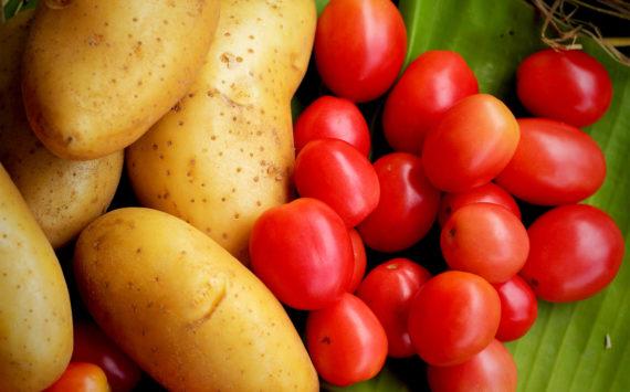 Etikettenschwindel bei Lebensmitteln: Wenn die Verpackung zu viel verspricht
